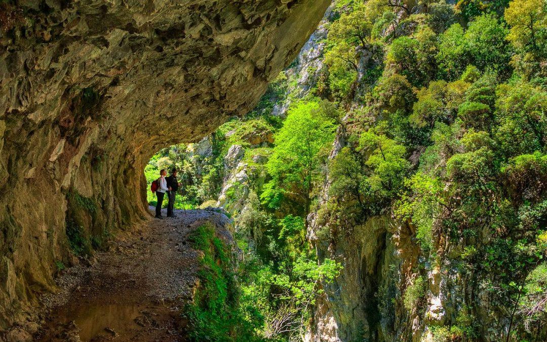 Asturias playa y montaña